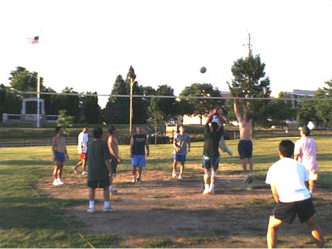 Volleyball at the park.